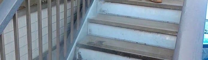 外壁塗装埼玉県吉見町下細谷より 高圧洗浄作業②