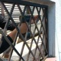 塗装前にベランダ手摺の格子を外します|外壁塗装埼玉県川越市下新河岸現場で塗替えリフォーム施工中