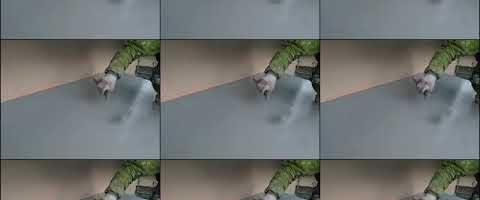 玄関庇の上塗り作業l埼玉県ふじみ野市桜ケ丘現場で塗替えリフォーム施工中